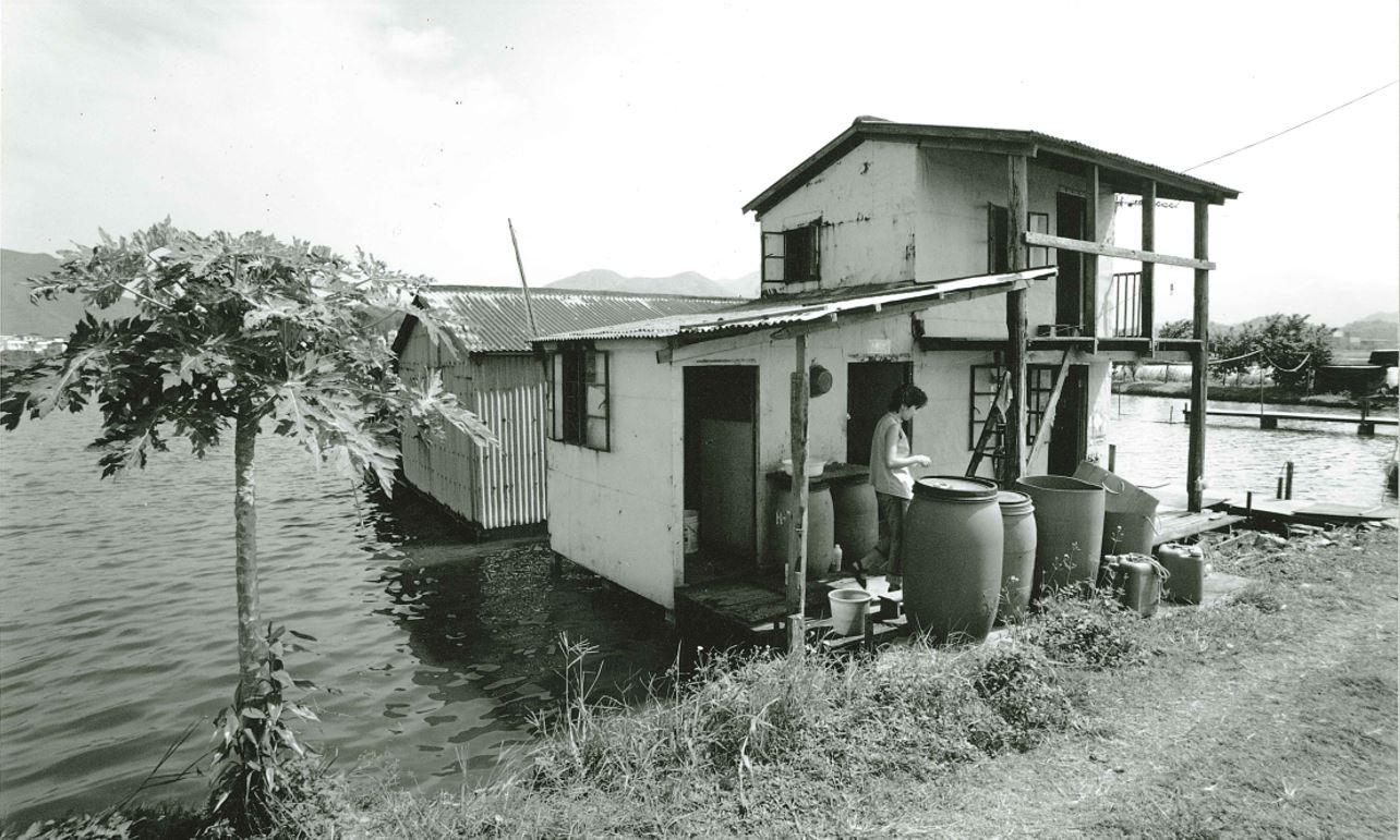 魚屋(陳國新提供)
