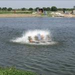增氧機:水車式