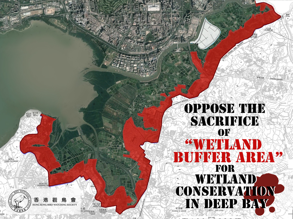 "Oppose the sacrifice of ""Wetland Buffer Area"" (WBA) for wetland conservation in Deep Bay"