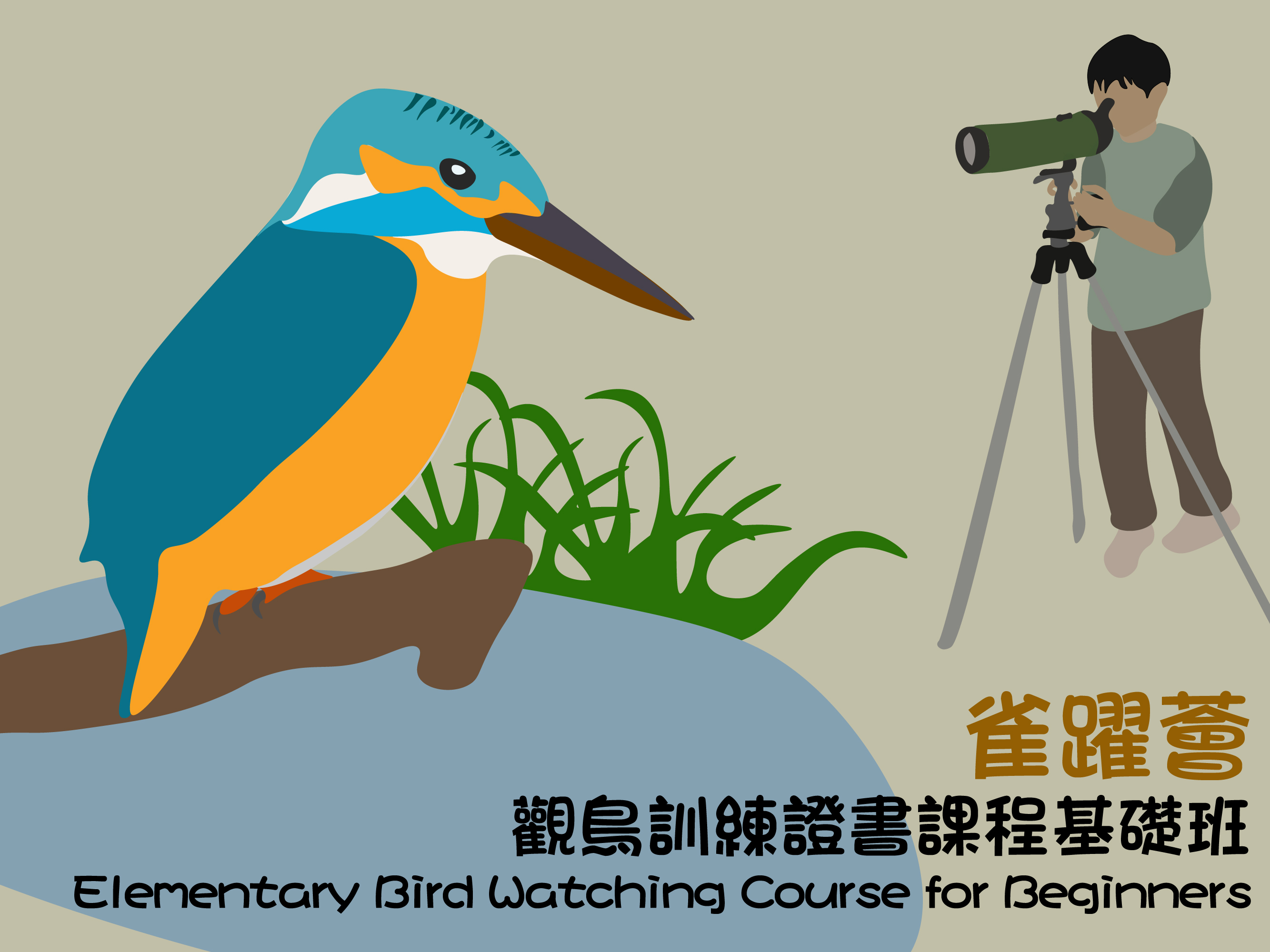 Elementary Bird Watching Course for Beginners