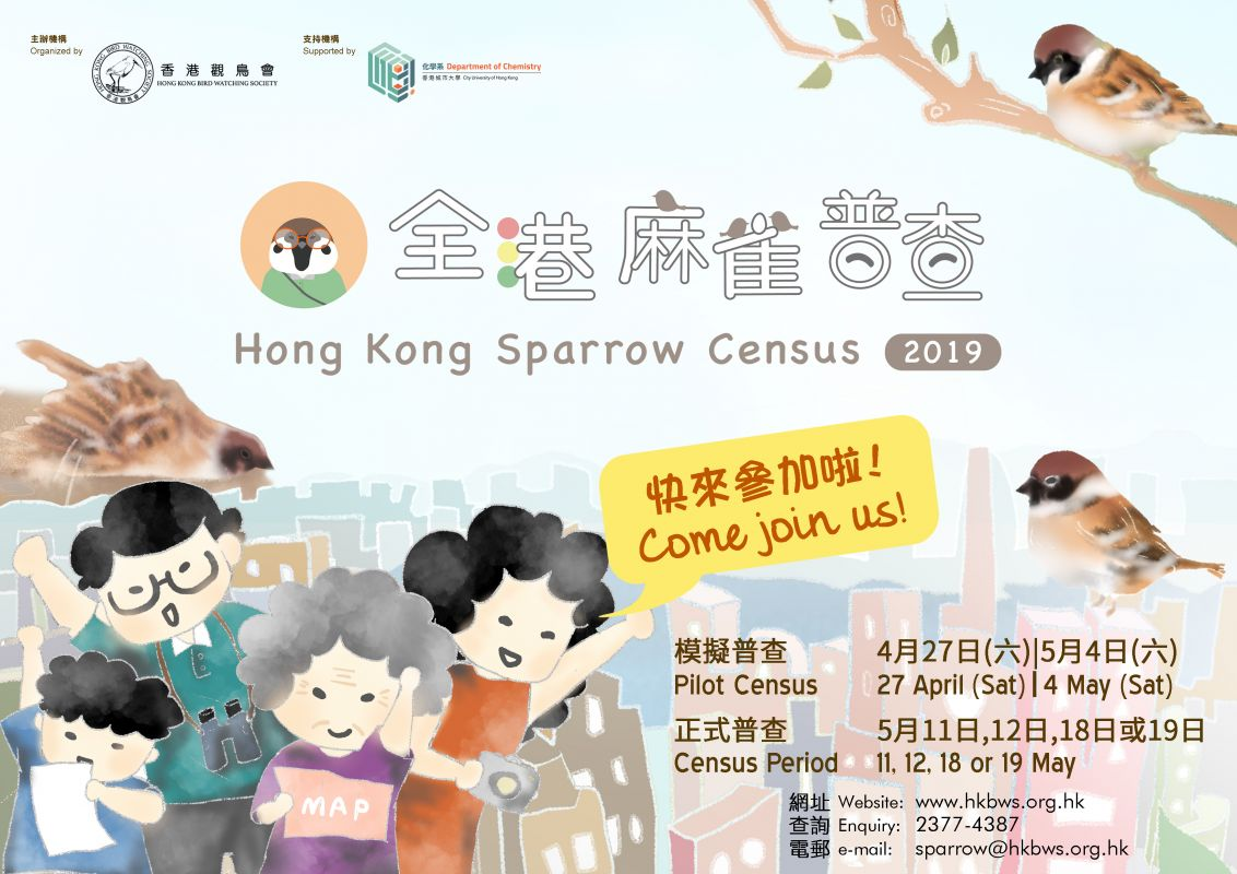 全港麻雀普查 2019 - 招募麻雀普查員 Hong Kong Sparrow Census 2019 – Surveyor Recruitment!