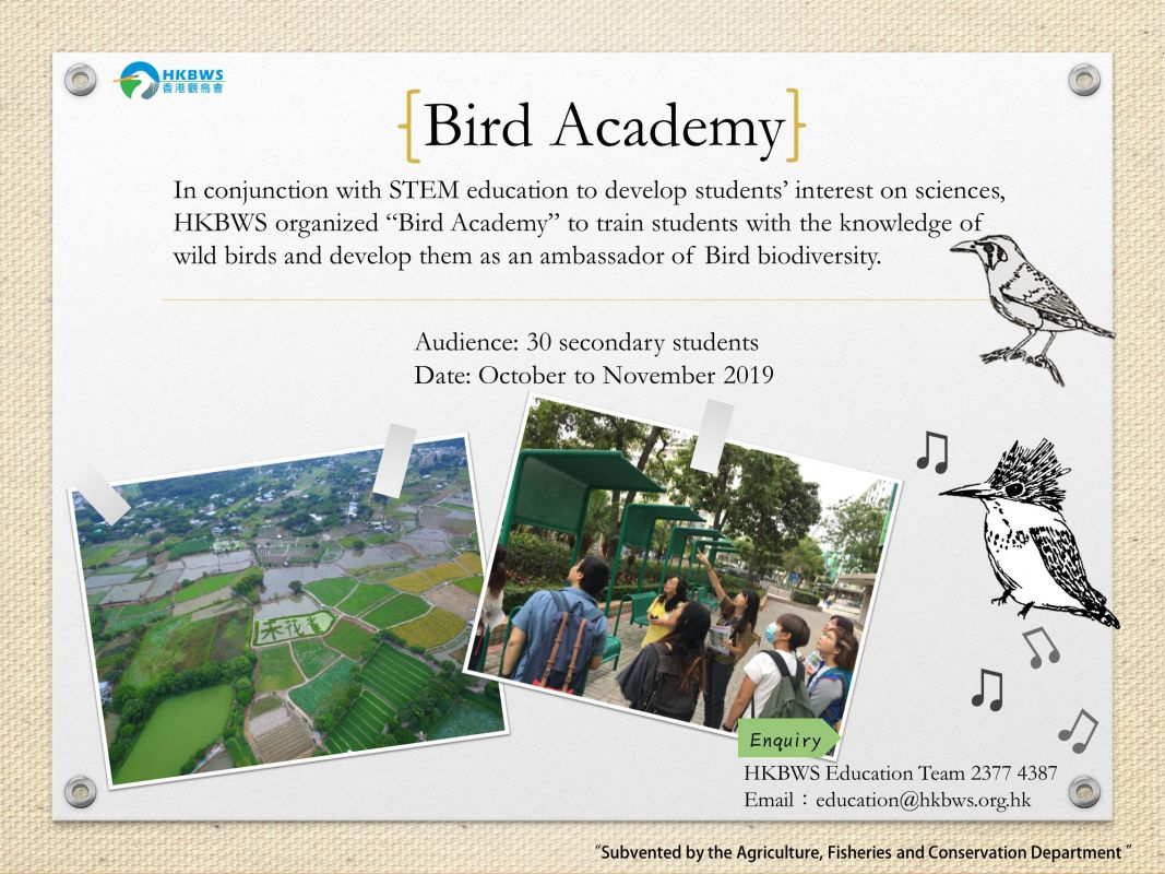 Bird Academy for Secondary Students