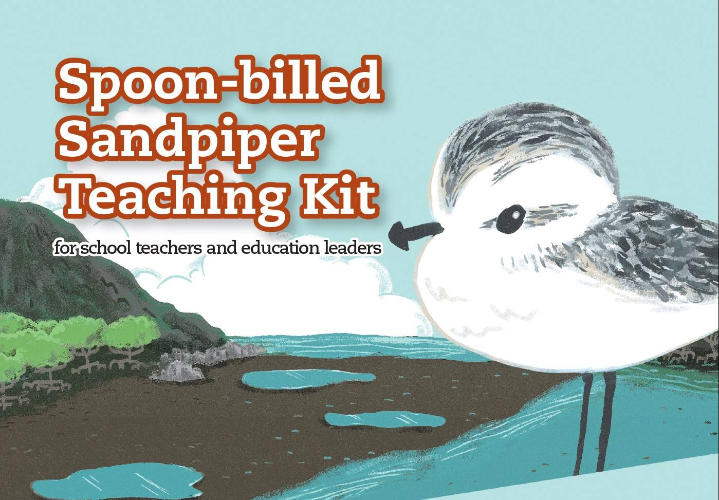 認識勺嘴鷸教材套 Spoon-billed Sandpiper Teaching Kit